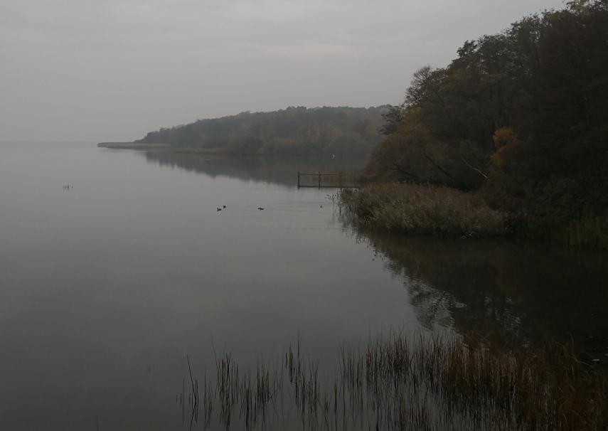 Lake Steinhude near Neustadt